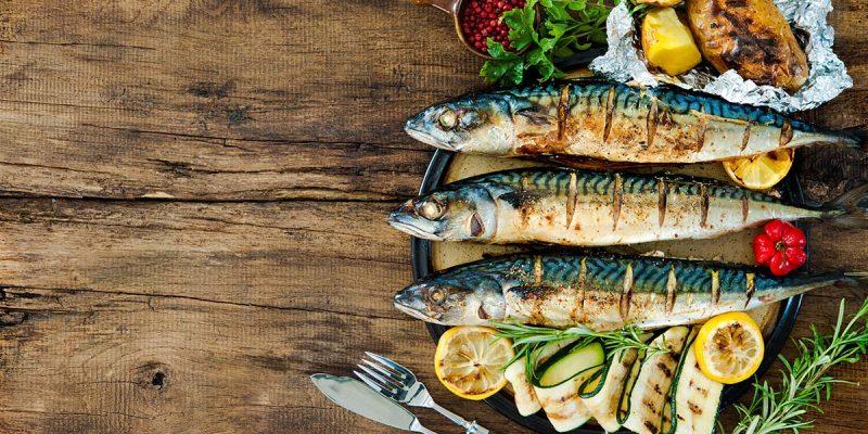 Makreel Vetgoed: waarom is er zoveel aandacht voor deze vette vis?